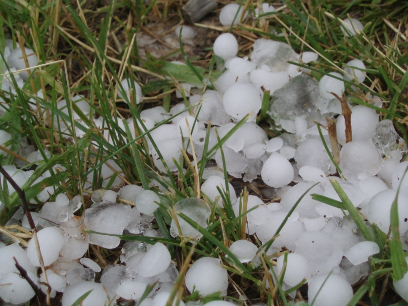Phoenix Hail Storm CourtSettlement